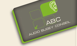audio bugey conseil